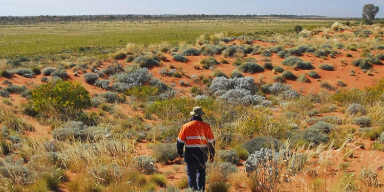 Greatland Receives Great News From Warrentinna Gold Project