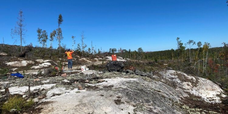 Grid Metals Bids For New Lithium Pegmatite Discovery In Ontario